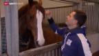 Video «Niklaus Rutschis Pferd Winsor am CSI Basel» abspielen