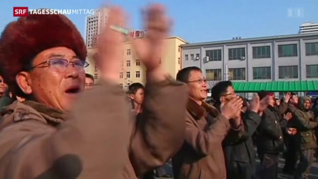 Video «Nordkorea testet Wasserstoffbombe» abspielen