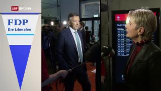 Video «FOKUS: FDP setzt auf erwartetes Zweier-Ticket » abspielen