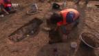 Video «Dorf aus der Bronzezeit entdeckt» abspielen