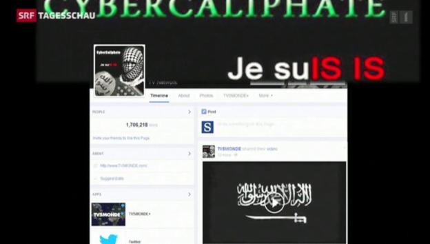 Video «IS-Hacker attackieren französichen TV-Sender» abspielen