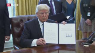 Video «Trump genehmigt Bau von Öl-Pipelines» abspielen