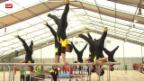 Video «Eidgenössisches Turnfest: Die schönsten Bilder» abspielen