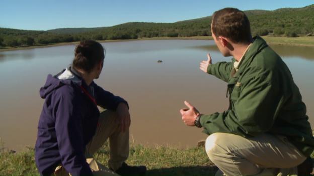 Video «Pätagei in Südafrika – Hippo» abspielen
