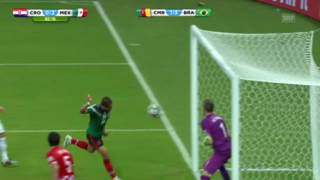 Video «FIFA WM 2014: Mexiko - Kroatien, die Live-Highlights» abspielen