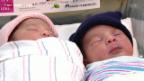 Video «Kuriose Zwillingsgeburt» abspielen