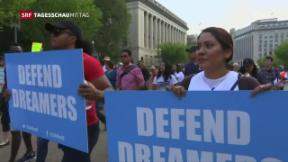 Video «Trump plant restriktiveres Einwanderungsgesetz» abspielen