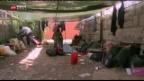 Video «Härte gegen Flüchtlinge» abspielen