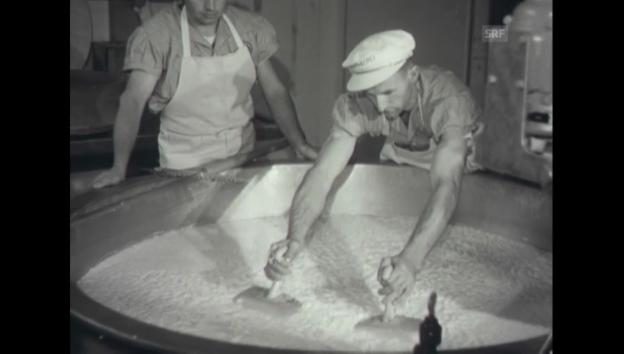 Video «Ausstellungseröffnung - Olma 1952 (Schweizer Filmwochenschau)» abspielen