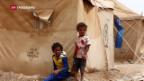 Video «Weltweit so viele Flüchtlinge wie noch nie» abspielen