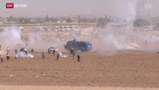 Video «Syrien: Flüchtlingsdrama spitzt sich zu» abspielen