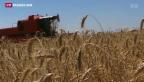 Video «Bauernsterben und stabiles Einkommen sind Kernaussagen des Agrarberichts» abspielen