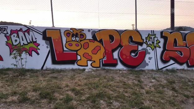 Video «Graffiti als Schulfach - Input» abspielen