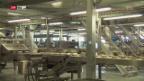 Video «Grösste Bäckerei der Schweiz eröffnet» abspielen