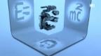 Video «Der Schattenkünstler der ETH Lausanne» abspielen