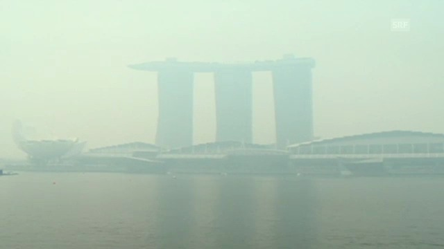 Rauchschwaden vernebeln Singapur