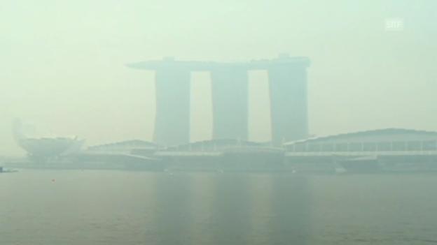 Video «Rauchschwaden vernebeln Singapur» abspielen