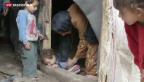 Video «Hilfe für syrische Flüchtlinge» abspielen