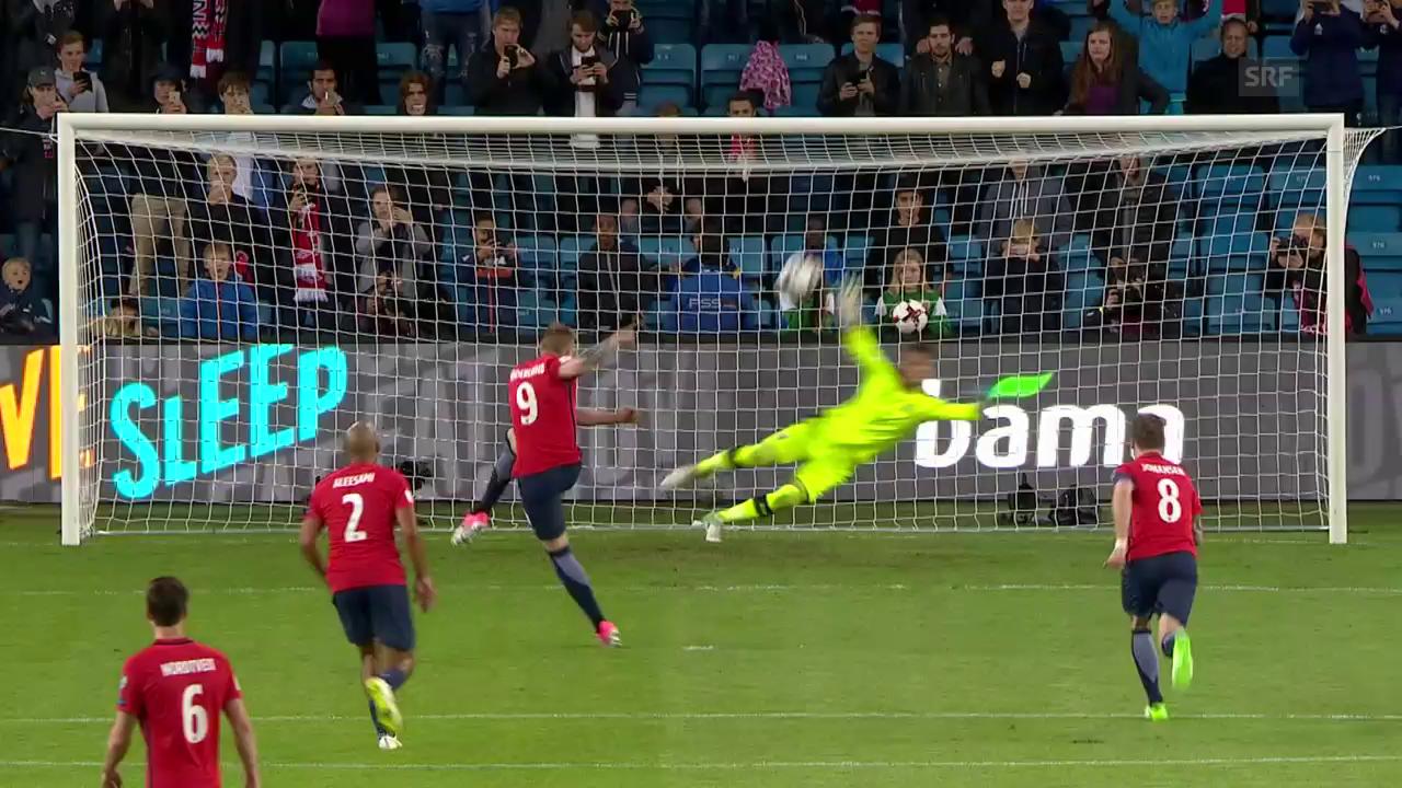 Die Tore bei Norwegen - Tschechien