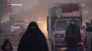 Video « Afghanistan-Konferenz in Genf» abspielen