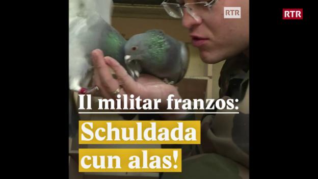 Laschar ir video «Il militar franzos: Schuldada cun alas!»