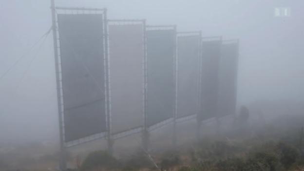 Video «Nebelfischer: Trinkwasser im marokkanischen Antiatlas» abspielen