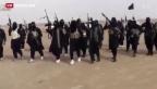 Video «Furcht vor dem IS im eigenen Land» abspielen