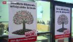 """Video «Masseneinwanderungsinitiative: """"Angriff auf den Wohlstand""""» abspielen"""