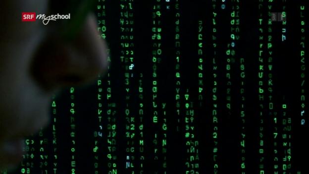 Video «Puck und das Rätsel der Codes» abspielen