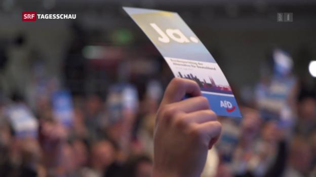 Video «Unruhen in und um AfD-Parteitag in Köln» abspielen