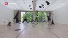 Video «Ausstellung mit Werken von Fischli/Weiss und Calder» abspielen