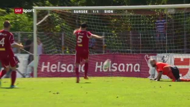 Video «Spielbericht Sursee - Sion («sportaktuell»)» abspielen