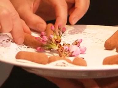 Video «Der grosse Kirschstängeli-Test: Wettstreit der Kantone» abspielen