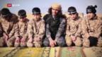 Video «FOKUS: Kindersoldaten: Sie lernen zu töten – und zu sterben» abspielen