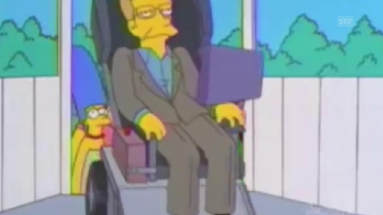 Stephen Hawking: ein Serien-Star