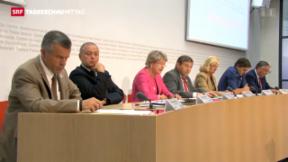 Video «Komitee gegen Wehrpflicht-Initiative» abspielen