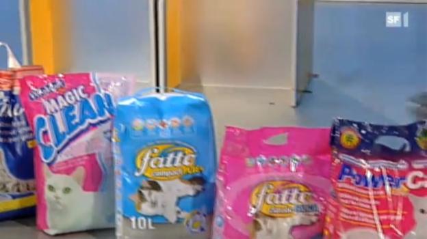 Video «Katzenstreu im Test: Diese sind echt für die Katz» abspielen