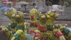 Video «Wiedereröffnung Bruno Weber-Park» abspielen