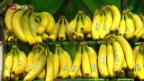 Video «Exotische Zölle sollen aufgehoben werden» abspielen