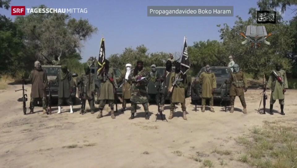 Boko Haram zur angeblichen Waffenruhe