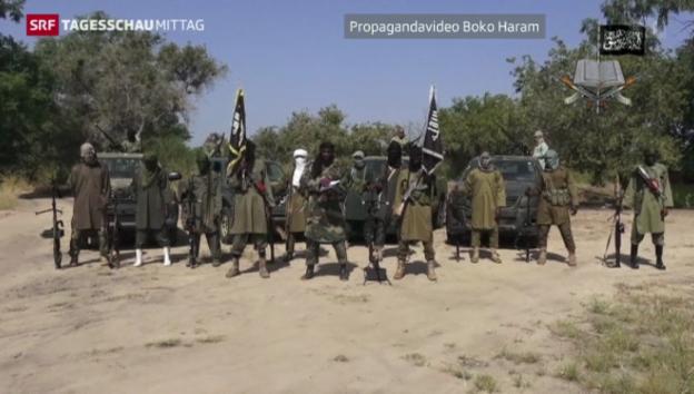 Video «Boko Haram zur angeblichen Waffenruhe» abspielen