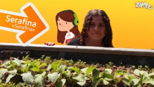 Video «Am liebsten chillt Serafina in ihrem Garten» abspielen