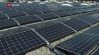 Video «Wo steht die Schweiz mit der Solarenergie?» abspielen