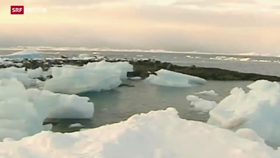 Umstrittene Ölbohrungen in der Arktis