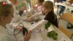 Video «Kinder operieren ihre Plüschtiere» abspielen