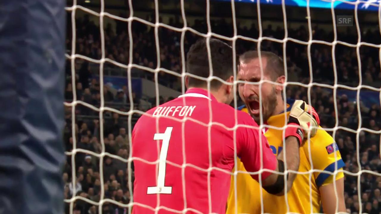 Einblick in Buffons Gefühlswelt
