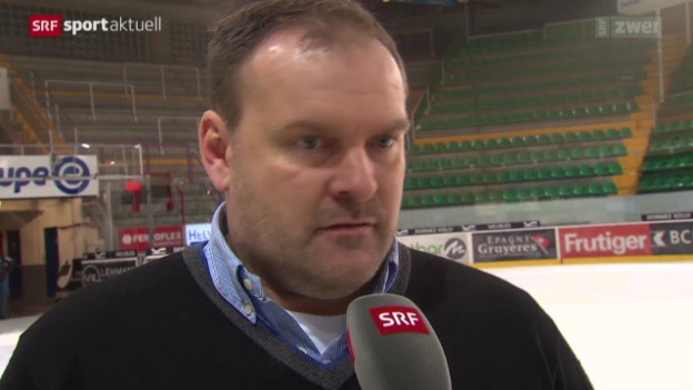 Video «Eishockey: Interview mit Heins Ehlers» abspielen