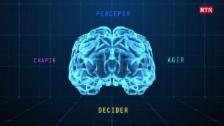 Laschar ir video «AI: Intelligenza artifiziala»