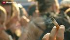 Video «Vernehmlassung für neues Tabakproduktegesetz abgelaufen» abspielen