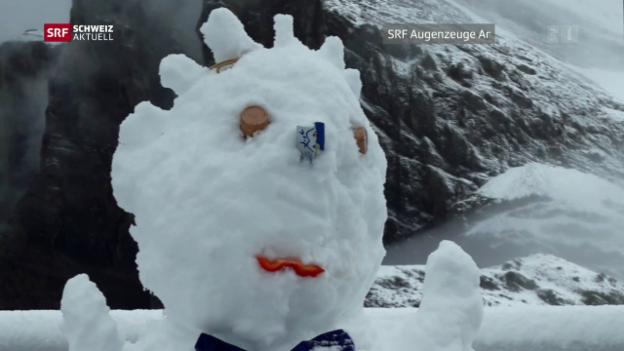 Video «Schweiz aktuell vom 11.08.2017» abspielen